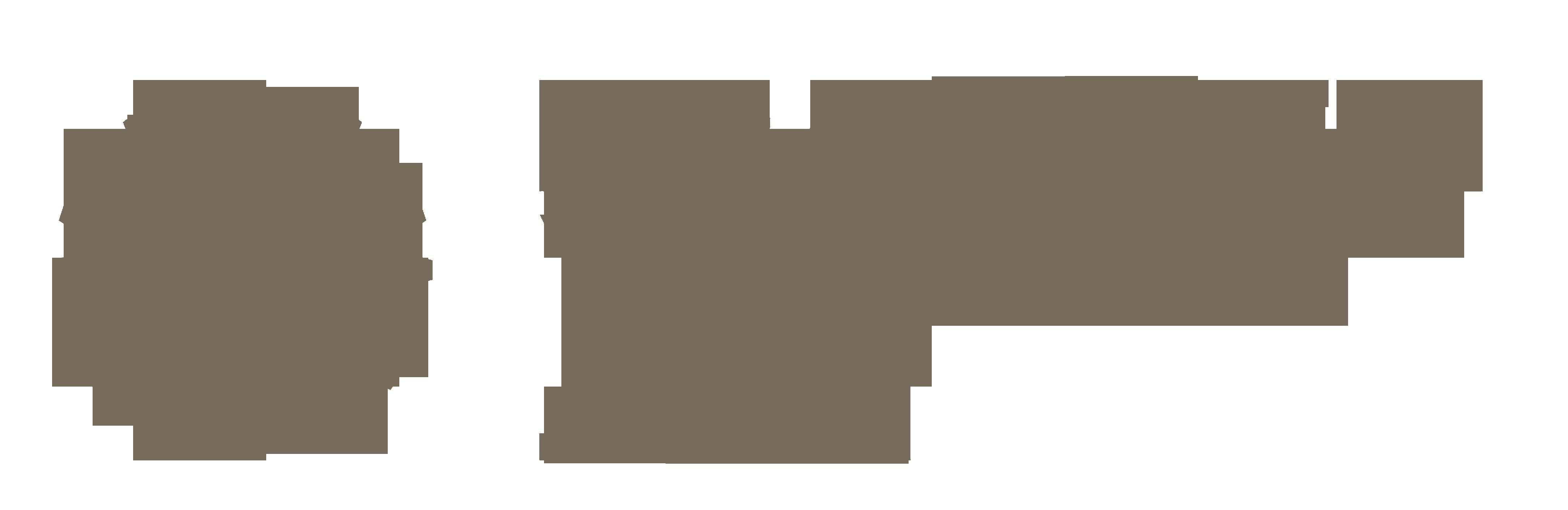 Krakowski Warsztat Jogi – Szkolenia Nauczycielskie, Wyjazdy do Indii